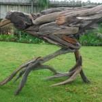Driftwood Pukeko